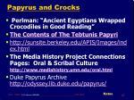 papyrus and crocks