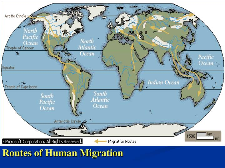 Routes of Human Migration