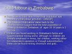 child labour in zimbabwe