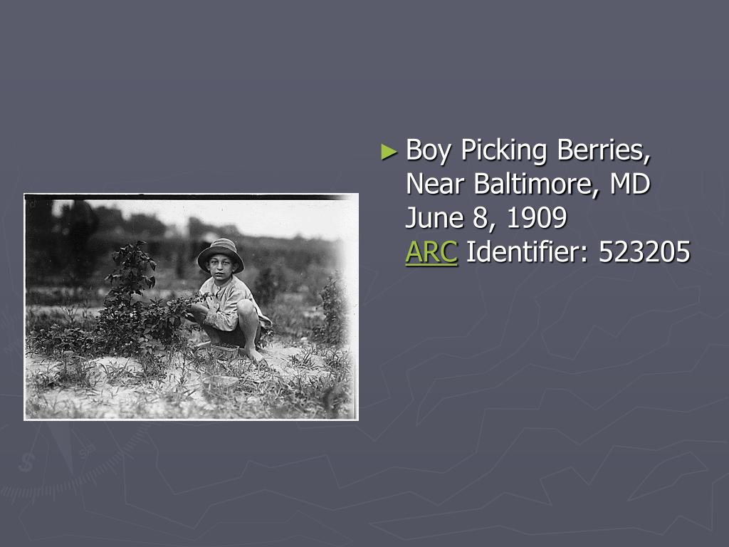Boy Picking Berries, Near Baltimore, MD