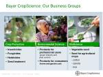 bayer cropscience our business groups