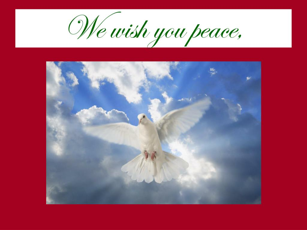 We wish you peace,