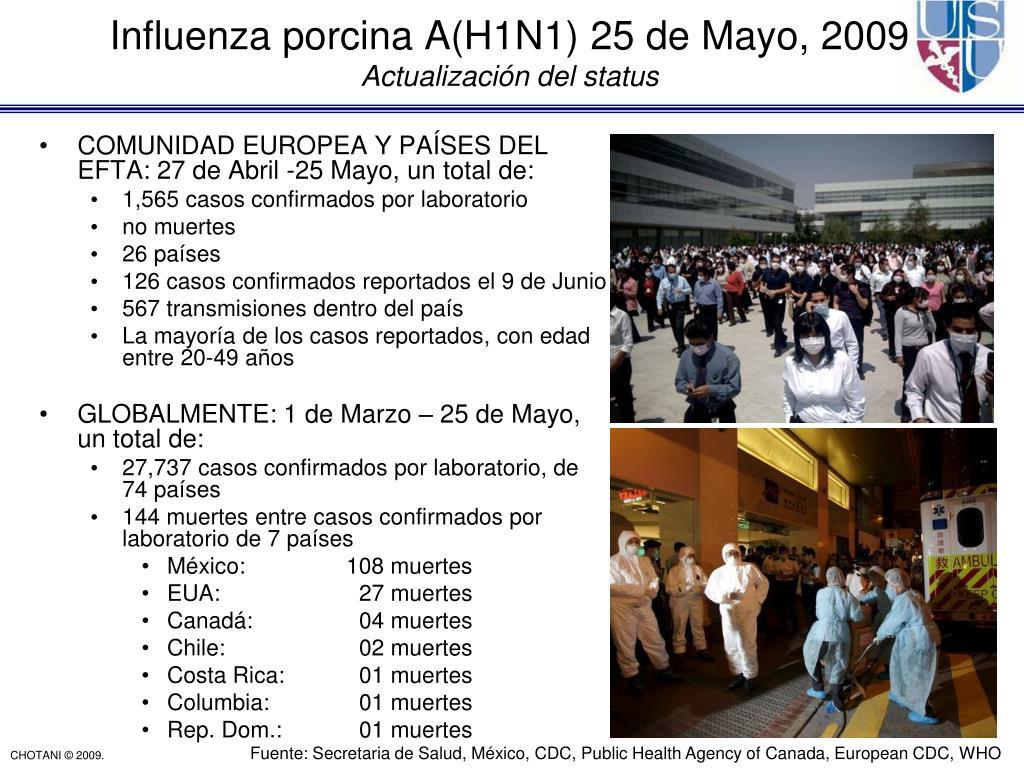 Influenza porcina A(H1N1) 25 de Mayo, 2009