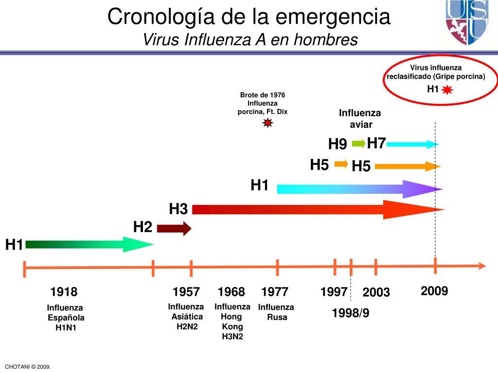 Cronología de la emergencia