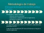 metodolog a de trabajo
