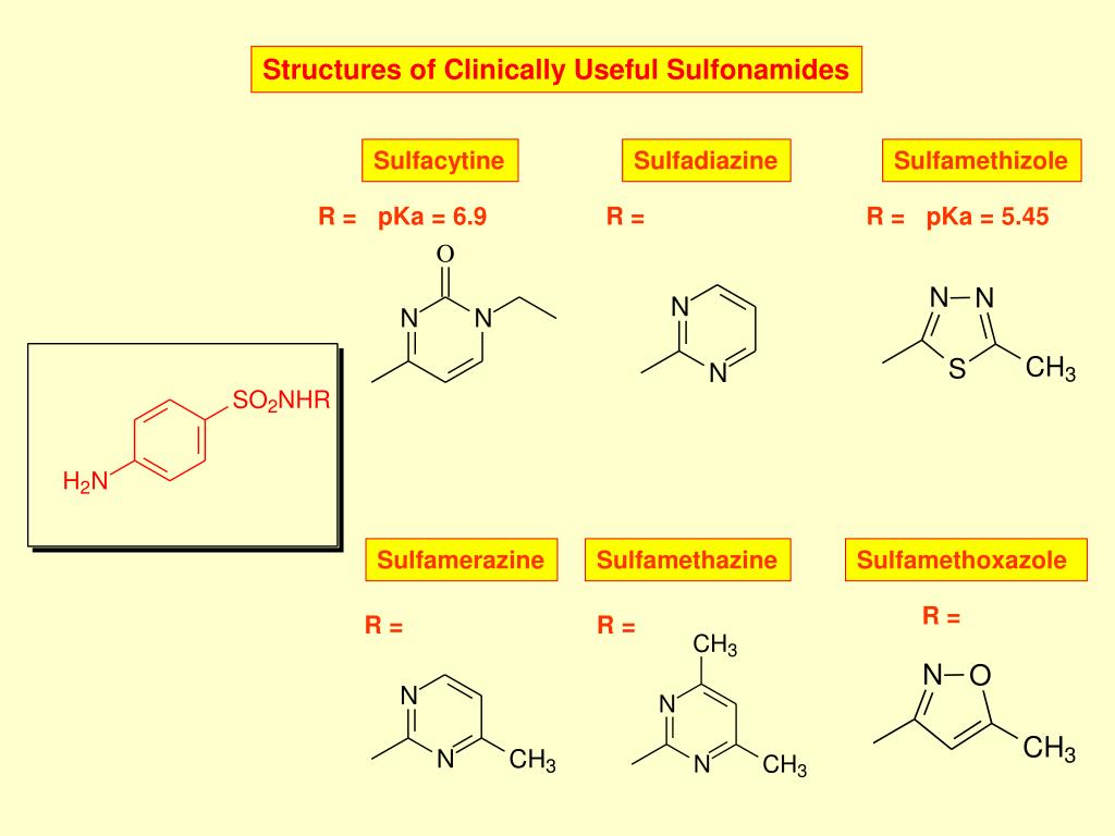 Structures of Clinically Useful Sulfonamides