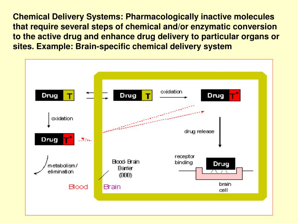 Chemical Delivery Systems: Pharmacologically inactive molecules that require several steps of chemical and/or enzymatic conversion to the active drug and enhance drug delivery to particular organs or sites. Example: Brain-specific chemical delivery system