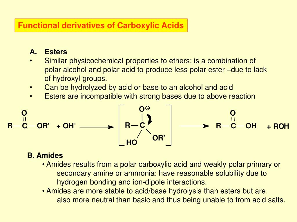 Functional derivatives of Carboxylic Acids