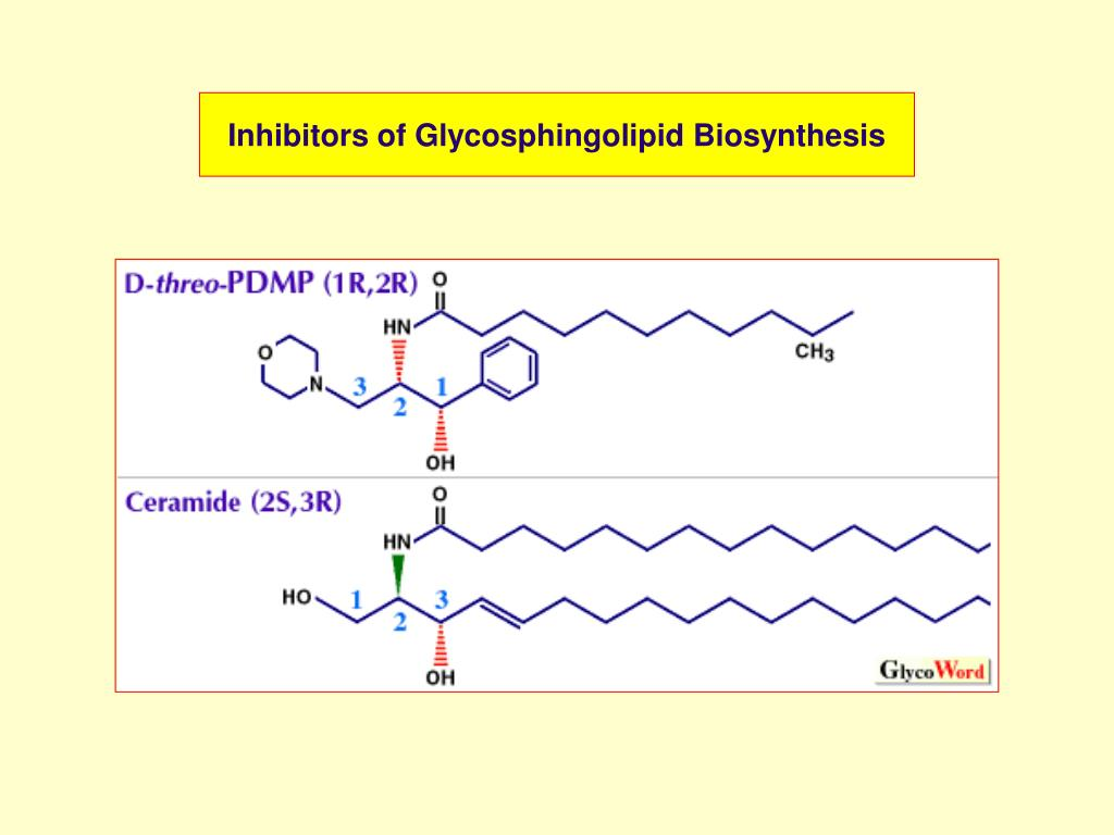 Inhibitors of Glycosphingolipid Biosynthesis