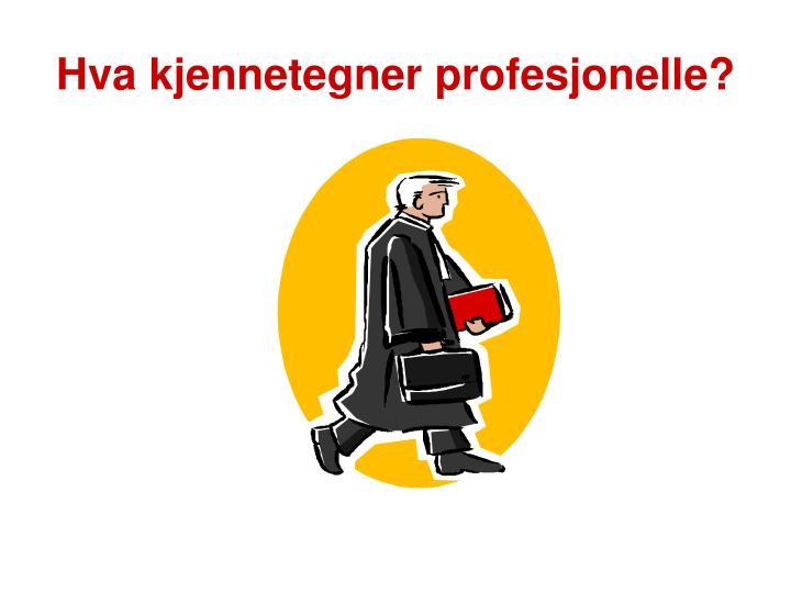 Hva kjennetegner profesjonelle?