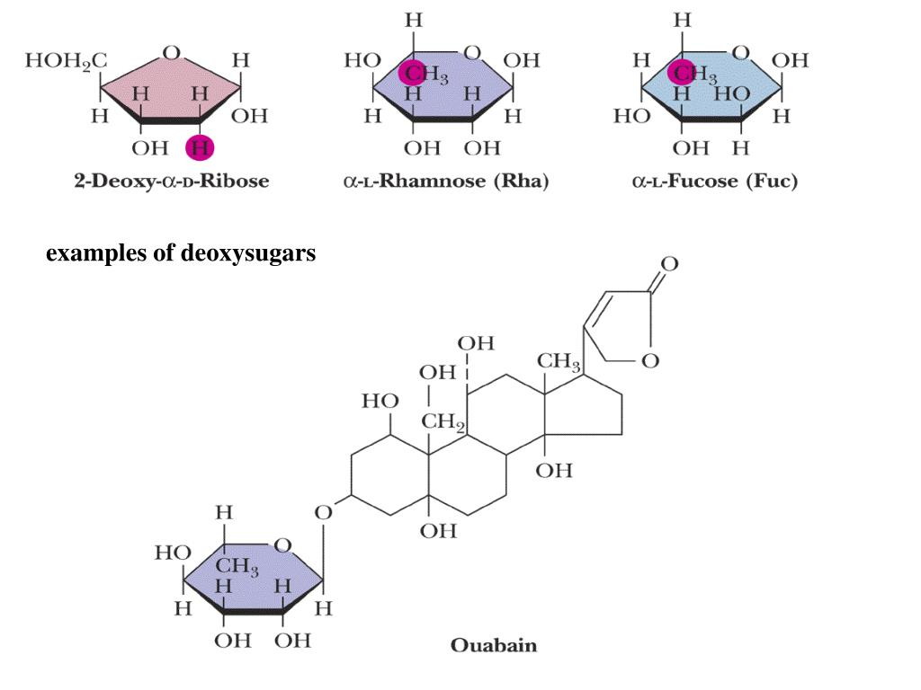 examples of deoxysugars