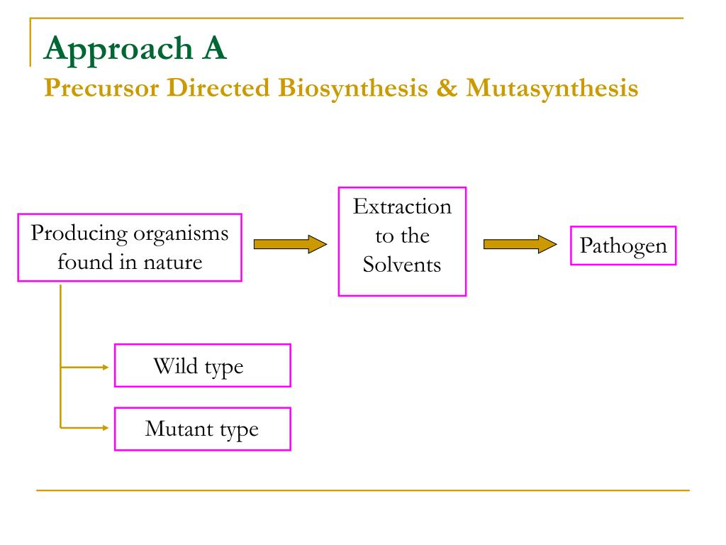 Precursor Directed Biosynthesis & Mutasynthesis