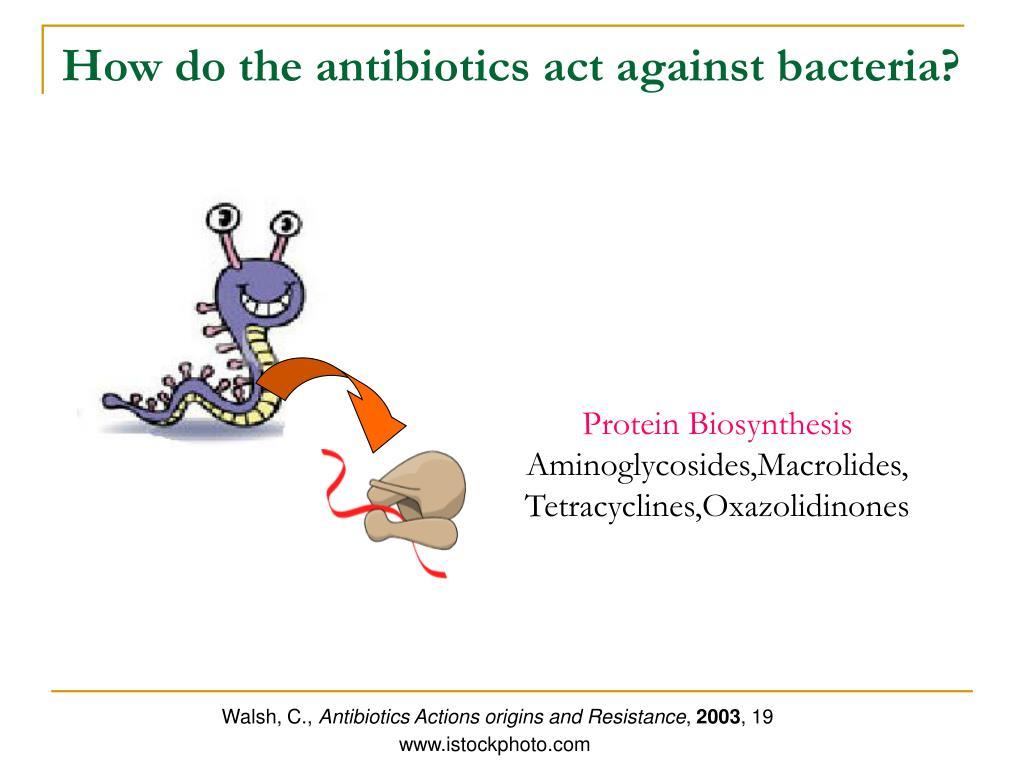 How do the antibiotics act against bacteria?