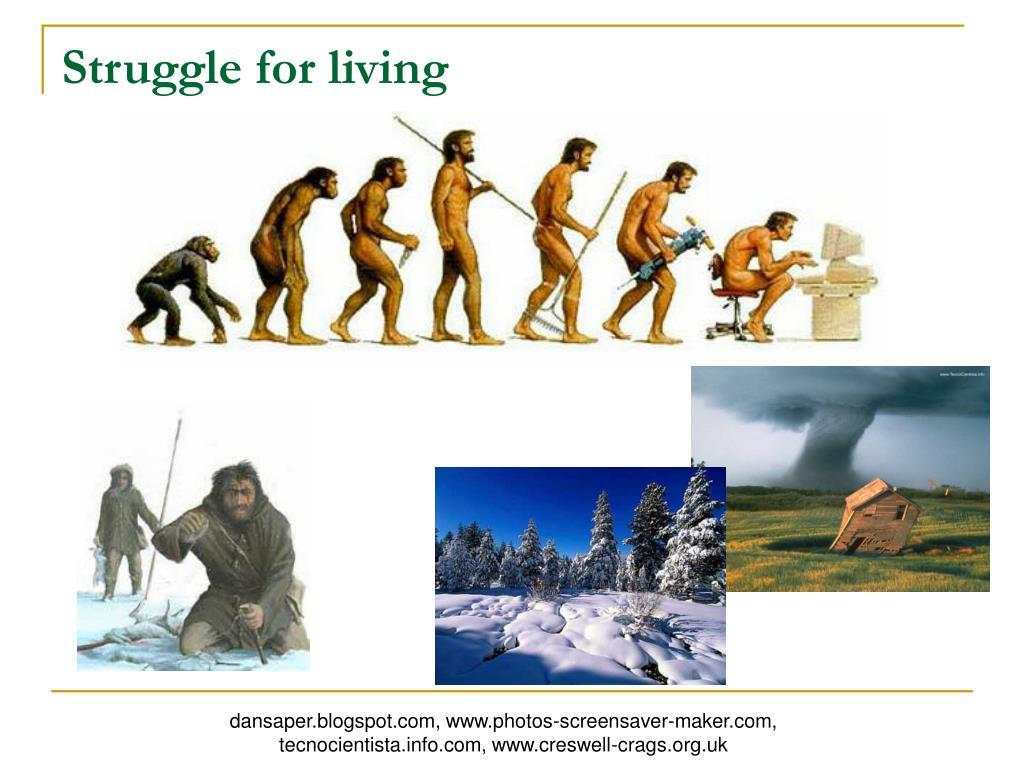 Struggle for living