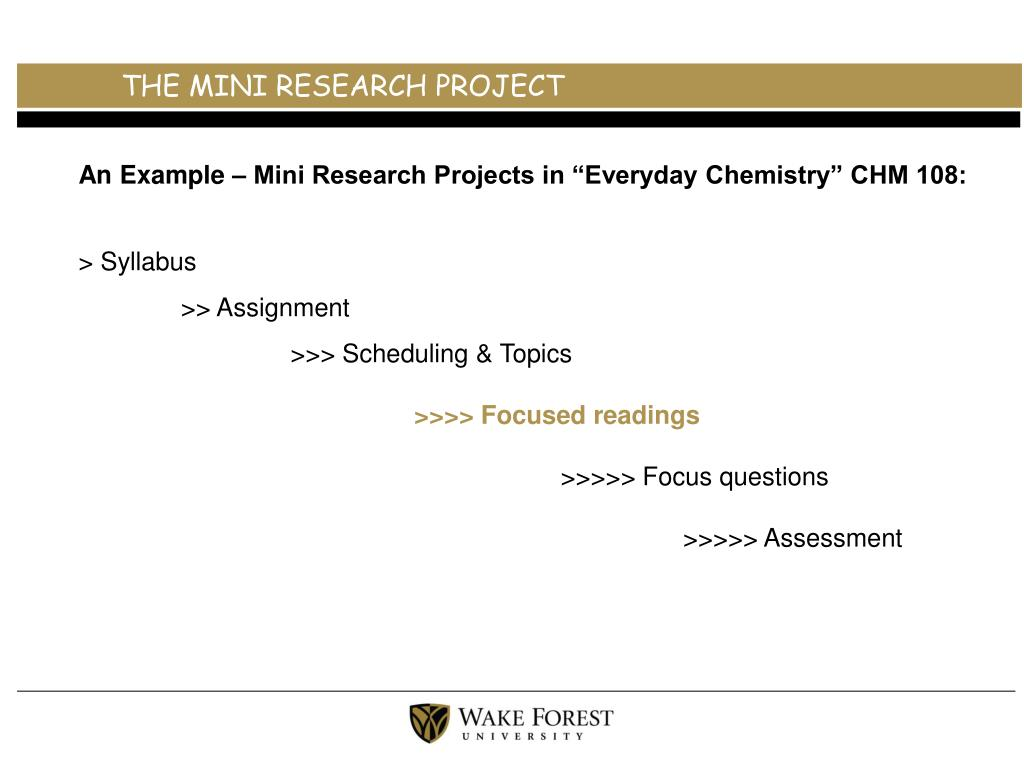 THE MINI RESEARCH PROJECT