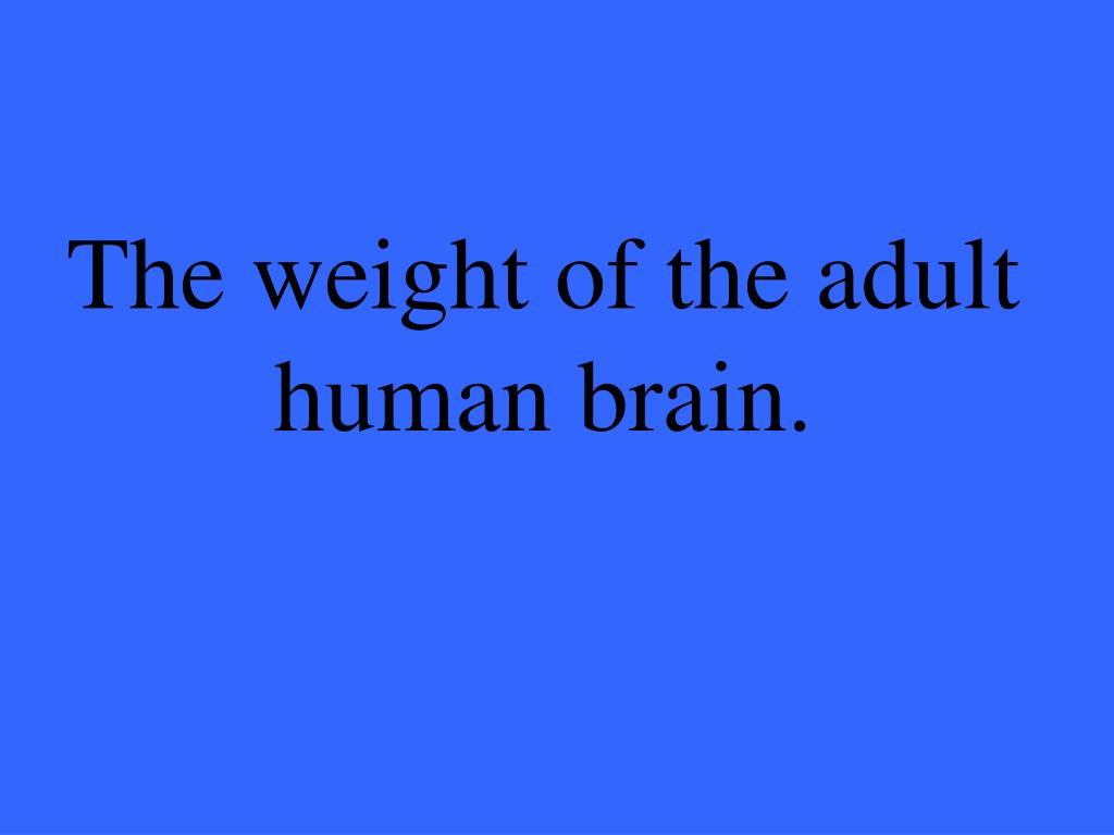 The weight of the adult
