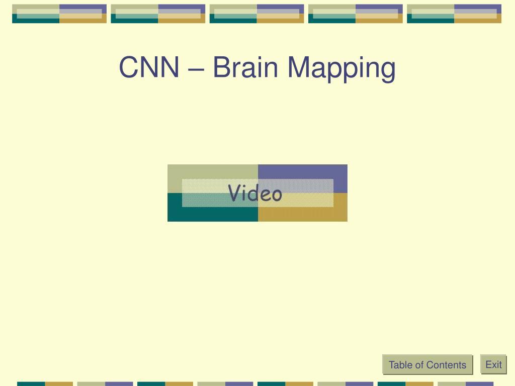 CNN – Brain Mapping