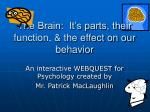 the brain it s parts their function the effect on our behavior