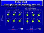 bold effect where physics and physiology meet 1 2