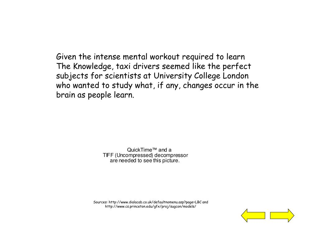 Given the intense mental workout required to learn