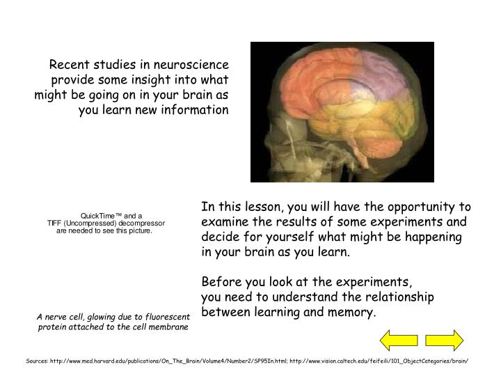 In this lesson, you will have the opportunity to examine the results of some experiments and decide ...