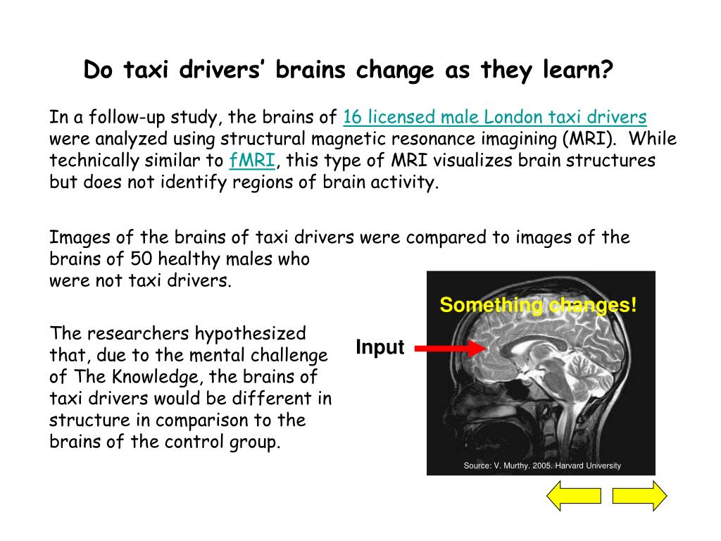 Do taxi drivers' brains change as they learn?