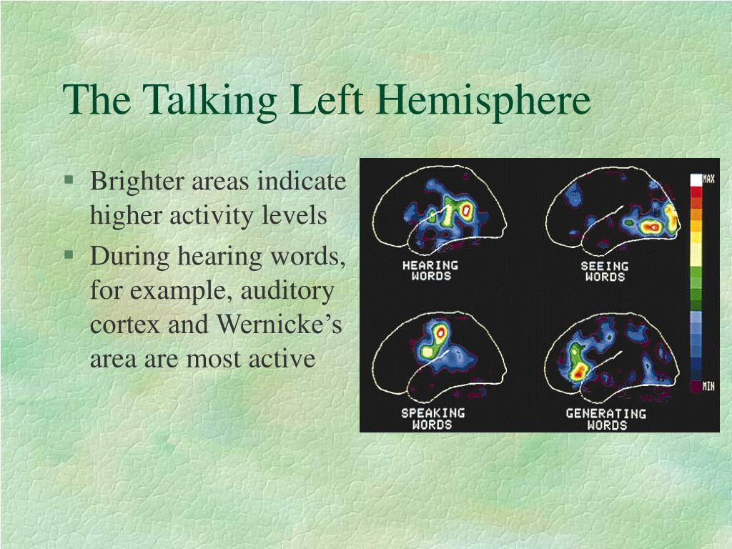 The Talking Left Hemisphere