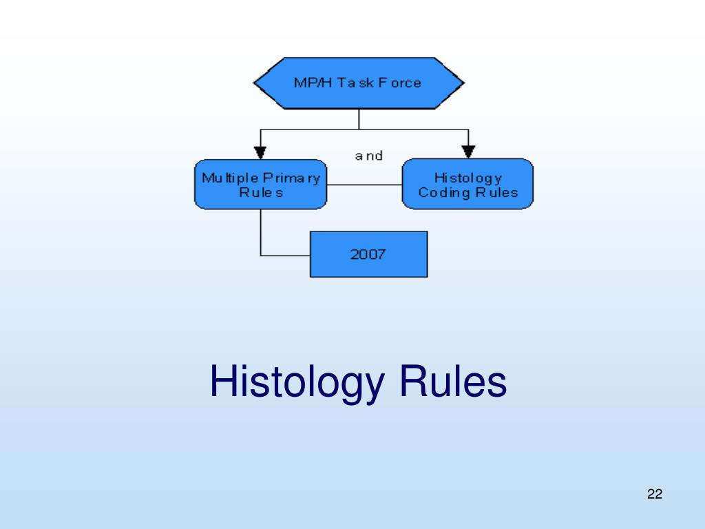 Histology Rules