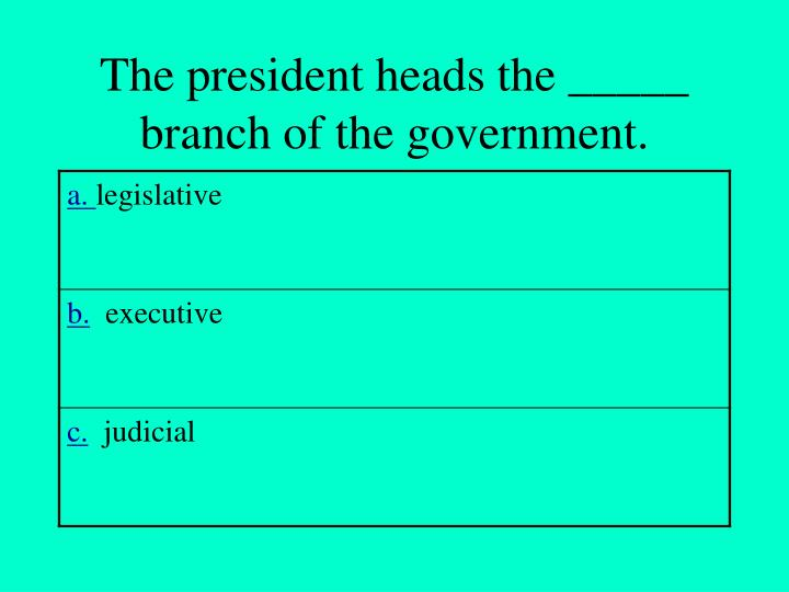 The president heads the _____ branch of the government.