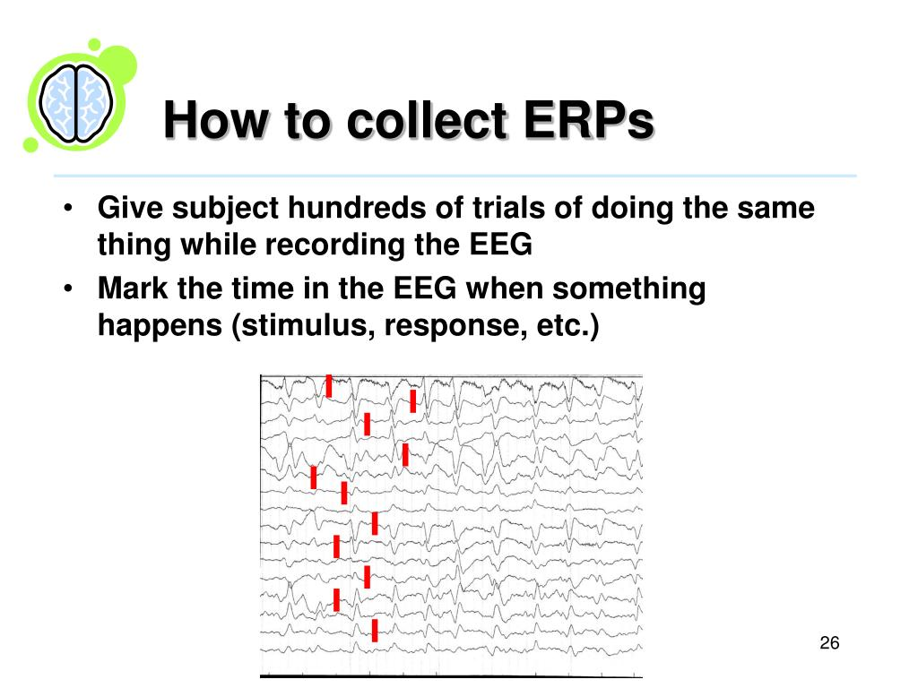 How to collect ERPs