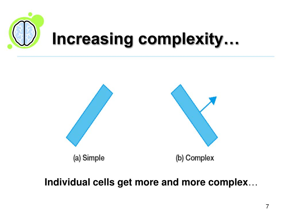 Increasing complexity…