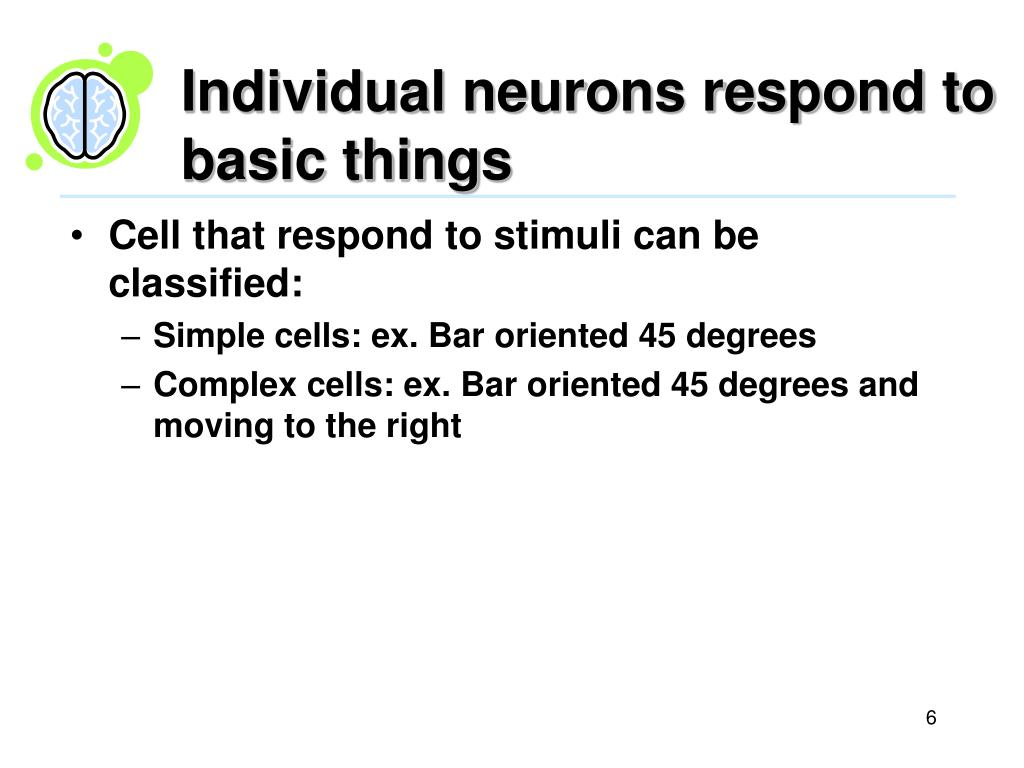 Individual neurons respond to basic things