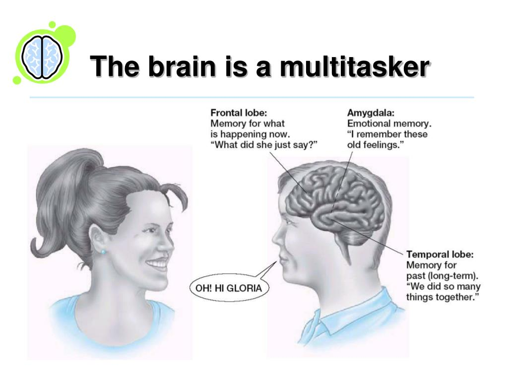 The brain is a multitasker