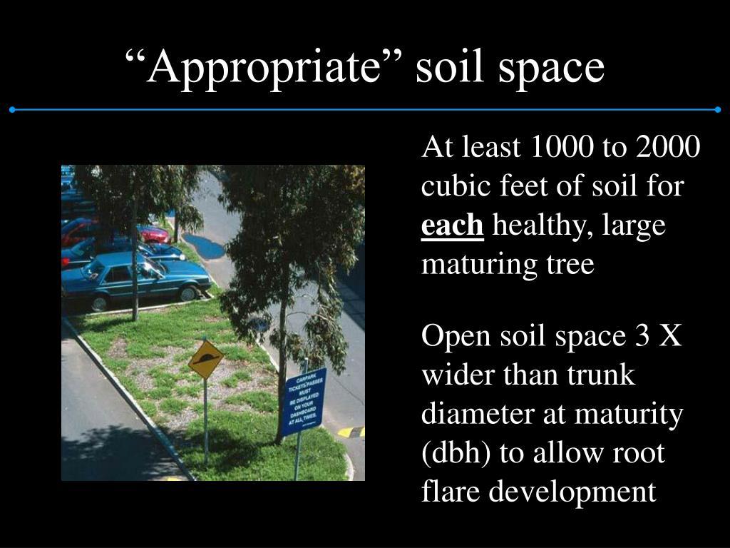 """Appropriate"" soil space"