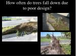 how often do trees fall down due to poor design