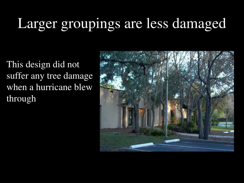 Larger groupings are less damaged