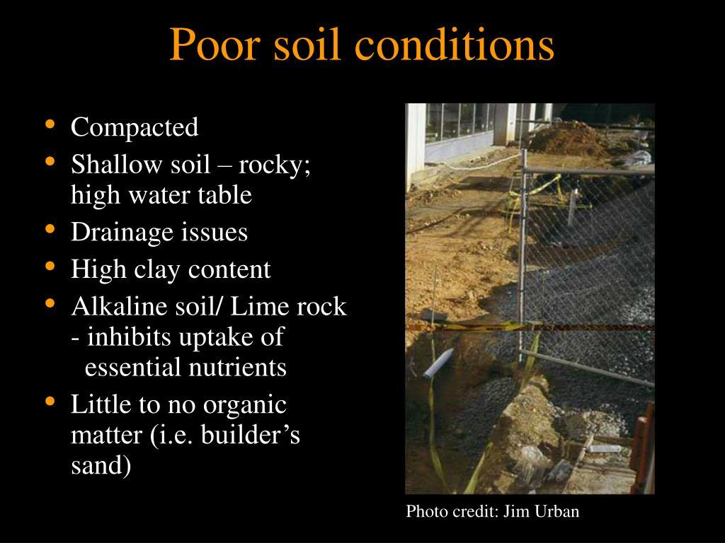 Poor soil conditions