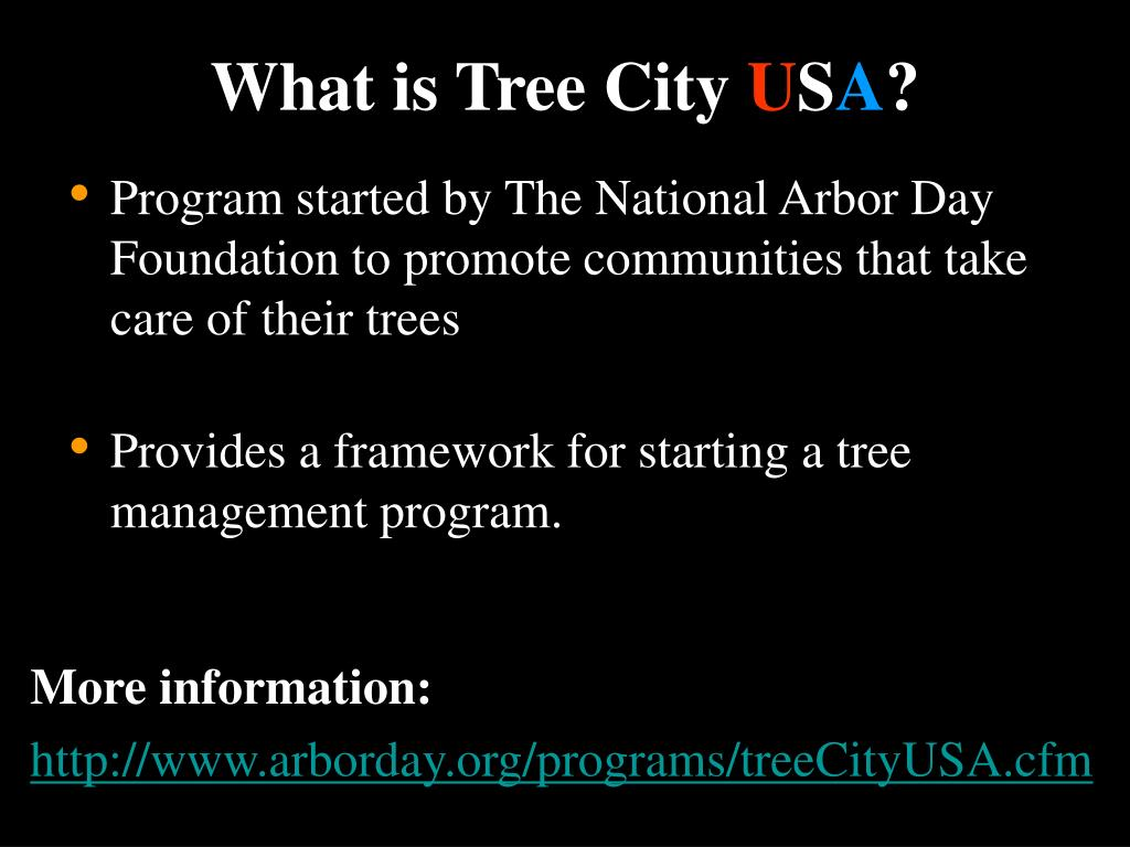 What is Tree City