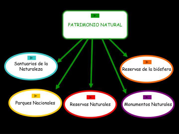 PATRIMONIO NATURAL