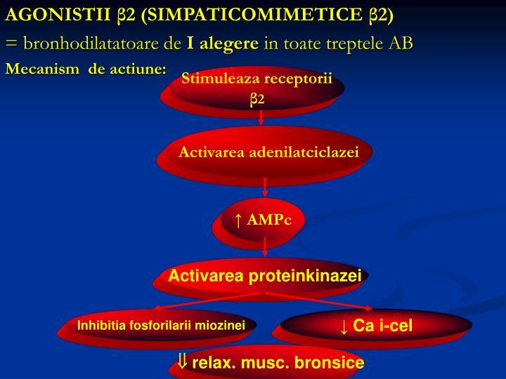 Stimuleaza receptorii