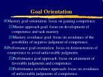 goal orientation