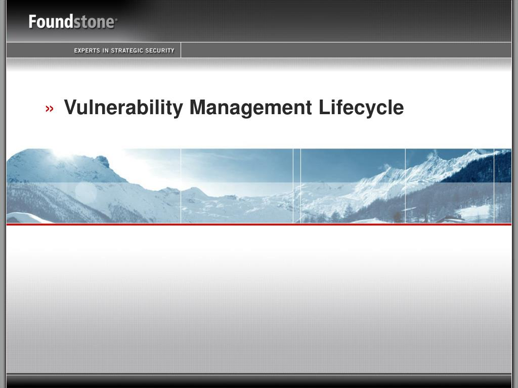 Vulnerability Management Lifecycle