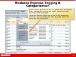 business expense tagging categorization