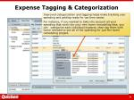 expense tagging categorization