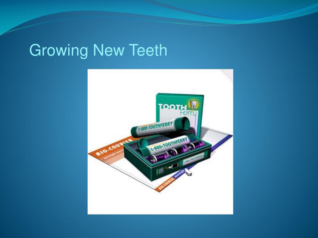 Growing New Teeth