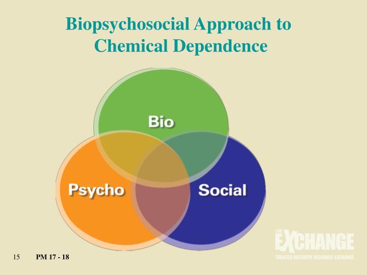 biopsychosocial of smoking Cigarette smoking among hiv+ men and women: examining health, substance use, and psychosocial correlates across the smoking spectrum.