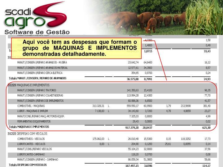 Aqui você tem as despesas que formam o grupo de MÁQUINAS E IMPLEMENTOS demonstradas detalhadamente.