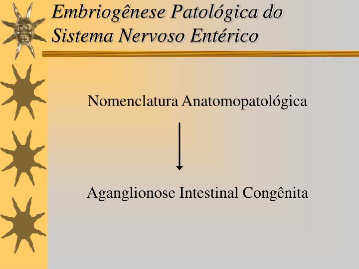 Embriogênese Patológica do Sistema Nervoso Entérico