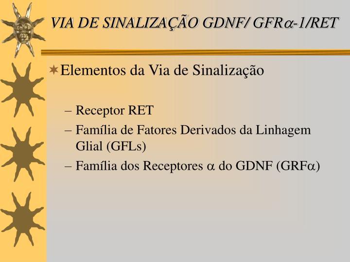 VIA DE SINALIZAÇÃO GDNF/ GFR