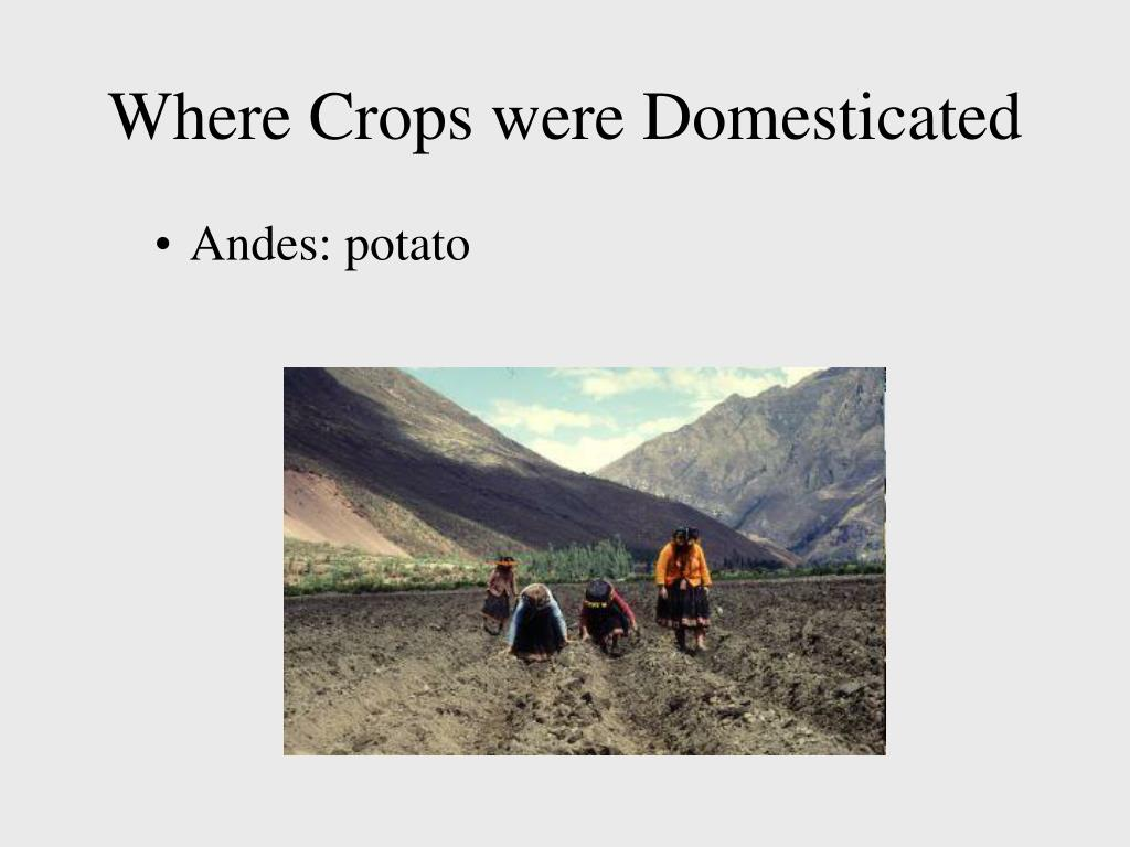 Where Crops were Domesticated